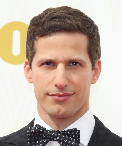 Andy Samberg Short Straight Casual    Hairstyle