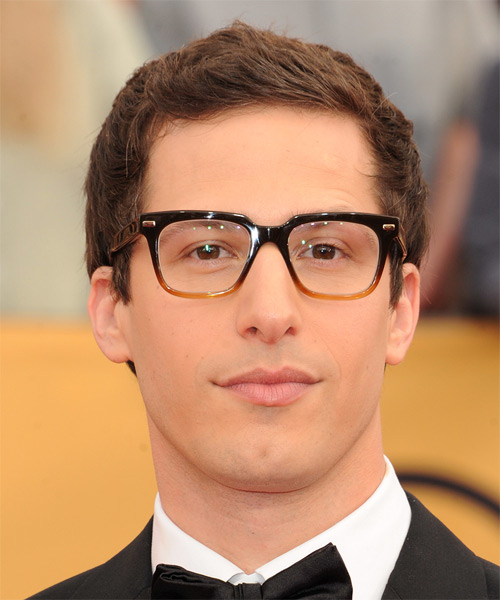 Andy Samberg Short Straight Casual    Hairstyle   -  Brunette Hair Color