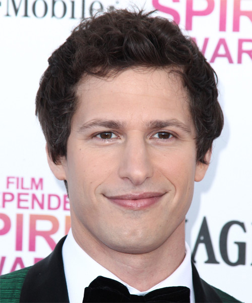 Andy Samberg Short Wavy Casual    Hairstyle   -  Brunette Hair Color