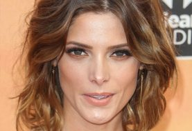 Ashley Greene Medium Wavy Casual    Hairstyle   -  Chestnut Brunette Hair Color