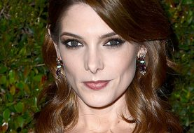 Ashley Greene Medium Wavy Formal Hairstyle  - Chocolate Brunette Hair Color