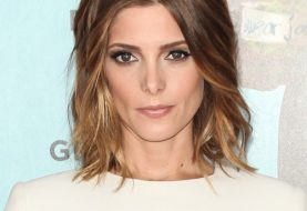 Ashley Greene Medium Wavy Formal  Hairstyle  - Golden Brunette Hair Color