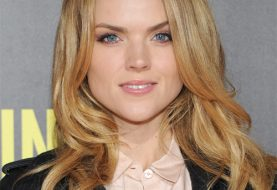Erin Richards Long Straight Casual  Hairstyle - Dark Copper Blonde Hair Color