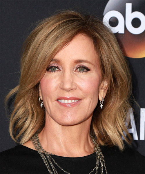 Felicity Huffman Medium Straight Casual    Hairstyle   - Light Caramel Brunette Hair Color