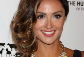 Katie Cleary Long Wavy Formal    Hairstyle   -  Caramel Brunette Hair Color with Light Brunette Highlights