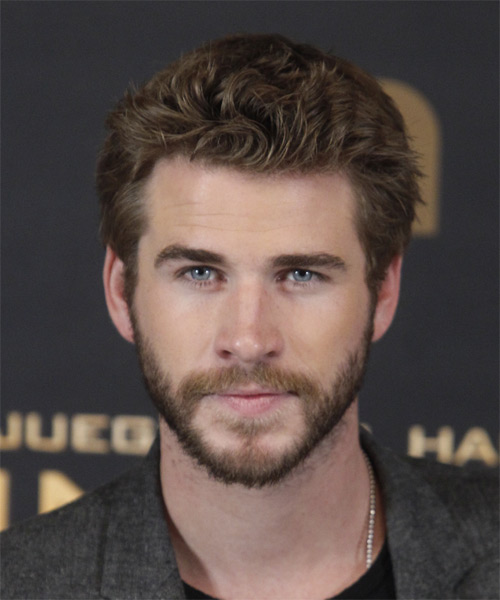 Liam Hemsworth Short Straight Casual    Hairstyle   - Chocolate Hair Color