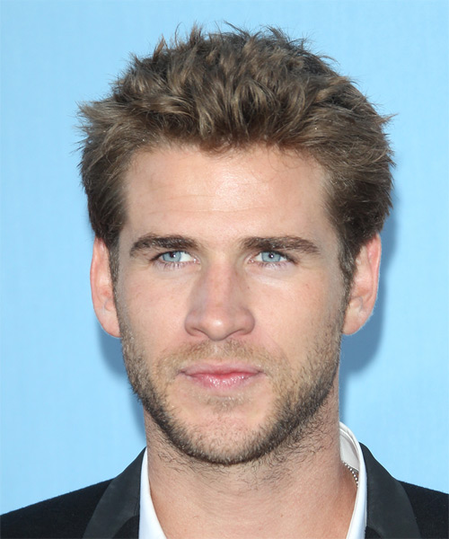 Liam Hemsworth Short Straight Casual    Hairstyle   -  Ash Brunette Hair Color