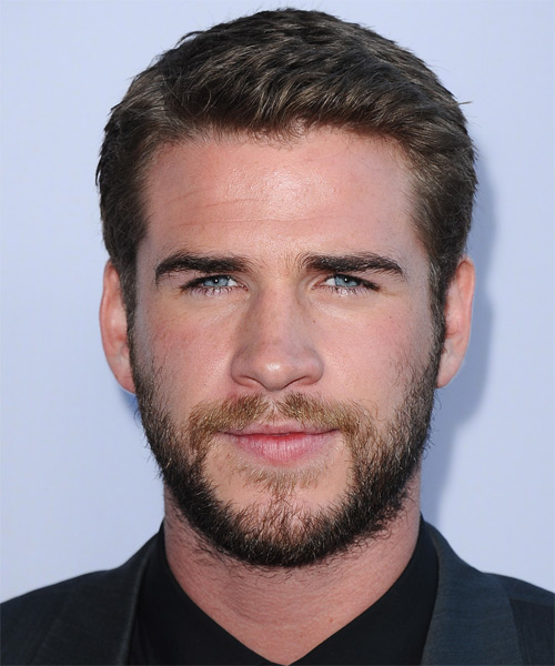 Liam Hemsworth Short Straight Formal    Hairstyle