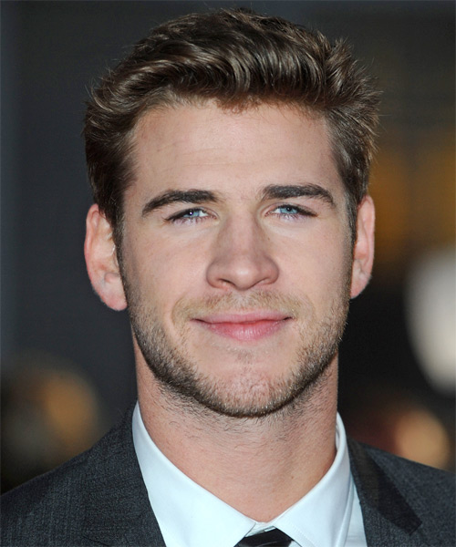 Liam Hemsworth Short Straight Formal    Hairstyle   -  Ash Brunette Hair Color