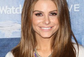 Maria Menounos Long Straight Formal    Hairstyle   -  Chestnut Brunette Hair Color