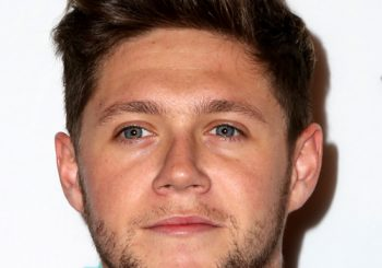 Niall Horan Short Straight Casual    Hairstyle   - Dark Brunette Hair Color